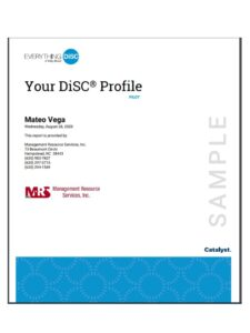 DiSC Workplace Catalyst Report